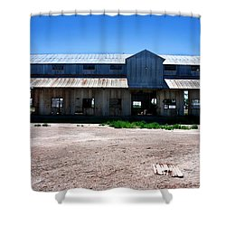 Shower Curtain featuring the photograph Somewhere On The Old Pecos Highway Number 6 by Lon Casler Bixby