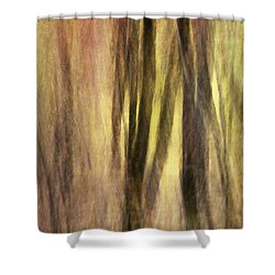 Sourwoods In Autumn Abstract Shower Curtain by Rob Travis