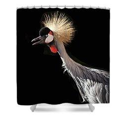 South African Grey Crowned Crane Kaanapali Maui Hawaii Shower Curtain by Sharon Mau