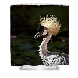 South African Grey Crowned Crane Shower Curtain by Sharon Mau