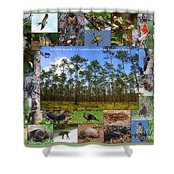 Southeastern Pine Forest Wildlife Poster Shower Curtain