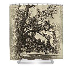 Southern Comfort Sepia Shower Curtain by Steve Harrington