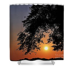 Southern Sky Shower Curtain