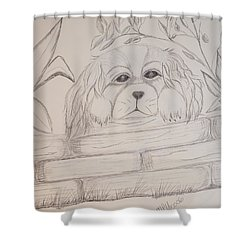 Shower Curtain featuring the drawing Spaniel Pup by Maria Urso