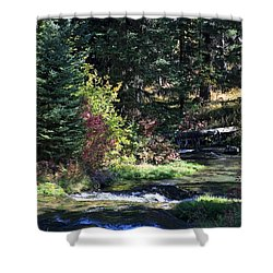 Spearfish Canyon Shower Curtain