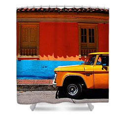 Special Delivery Shower Curtain by Skip Hunt