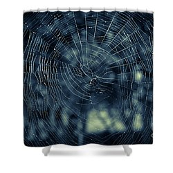 Shower Curtain featuring the photograph Spider Web by Matt Malloy