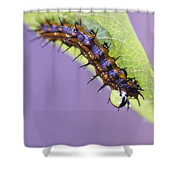 Spikes And Drops Shower Curtain by Priya Ghose