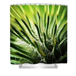Spikes Shower Curtain