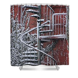 Spiral Staircase With Snow And Cooper's Hawk Shower Curtain