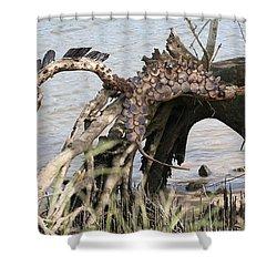 Spirit Horse Shower Curtain by Karen Elzinga