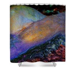Shower Curtain featuring the digital art Spirit's Call by Richard Laeton