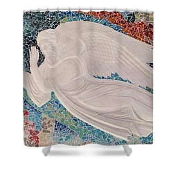 Spiritual Guidance Shower Curtain by Colleen Coccia