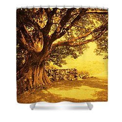 Spiritual Place. Wicklow Mountains. Ireland Shower Curtain by Jenny Rainbow
