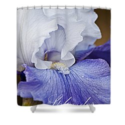 Splendor Shower Curtain by Christopher Gaston