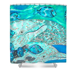 Spotted Dolphins And Blue Tang Shower Curtain by Daniel Jean-Baptiste