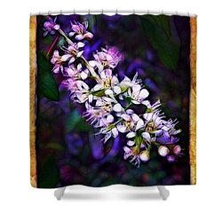 Spray Of Light Shower Curtain by Judi Bagwell