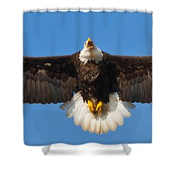 Shower Curtain featuring the photograph Spread Eagle by Randall Branham