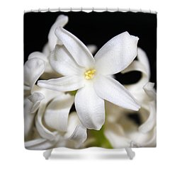Shower Curtain featuring the photograph Spring Beauty by Milena Ilieva