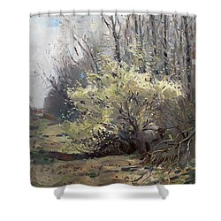 Spring Blossom  Shower Curtain by Ylli Haruni