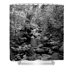Spring Creek Shower Curtain