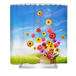 Spring Delivery 2 Shower Curtain by Carlos Caetano