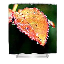 Spring Dew Shower Curtain