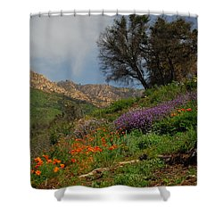Shower Curtain featuring the photograph Spring In Santa Barbara by Lynn Bauer