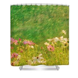 Spring Rain Shower Curtain by Darren Fisher
