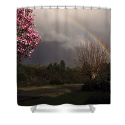 Shower Curtain featuring the photograph Spring Rainbow by Katie Wing Vigil