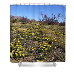 Spring Surprise Franklin Mountains Shower Curtain by Kurt Van Wagner