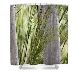 Spring Time In The Meadow Shower Curtain by Amy Gallagher