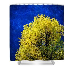 Spring Tree Shower Curtain by Silvia Ganora