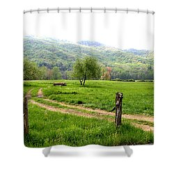 Shower Curtain featuring the photograph Springs Alive by Paul Mashburn