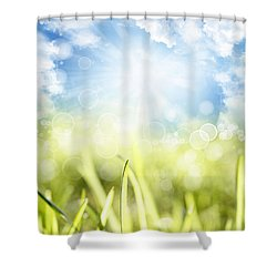 Springtime Shower Curtain by Les Cunliffe