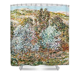 Springtime Vision Shower Curtain by Childe Hassam