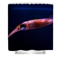Squid In Pink Shower Curtain