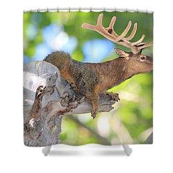 Squirrelk Shower Curtain