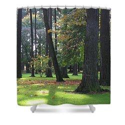 St. John's Trees Shower Curtain