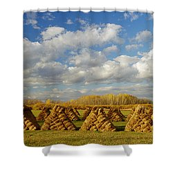 Stacked Hay Bales In Field, Selkirk Shower Curtain by Dave Reede