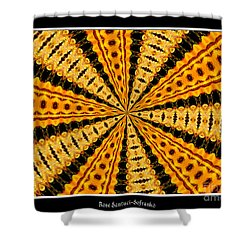 Stained Glass Kaleidoscope 37 Shower Curtain by Rose Santuci-Sofranko