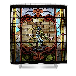 Stained Glass Lc 18 Shower Curtain by Thomas Woolworth