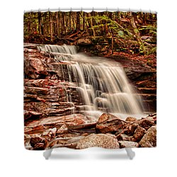 Stairs Falls Shower Curtain by Heather Applegate