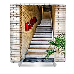 Stairway Shower Curtain by Christopher Holmes
