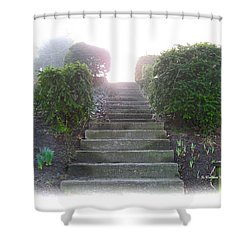 Stairway To A New Beginning Shower Curtain by Brian Wallace