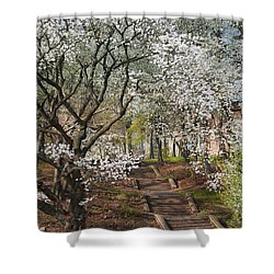Stairway To Happiness Shower Curtain