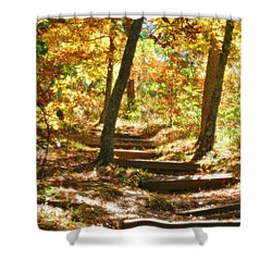 Shower Curtain featuring the photograph Stairway To Heaven by Peggy Franz