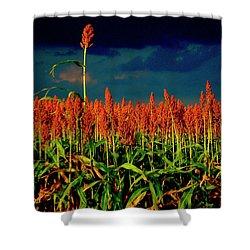 Stand Up And Sing Shower Curtain