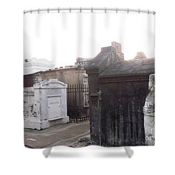 Shower Curtain featuring the photograph Standing Guard by Alys Caviness-Gober