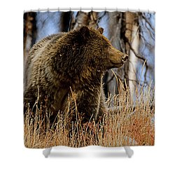 Shower Curtain featuring the photograph Standing In The Grass by J L Woody Wooden